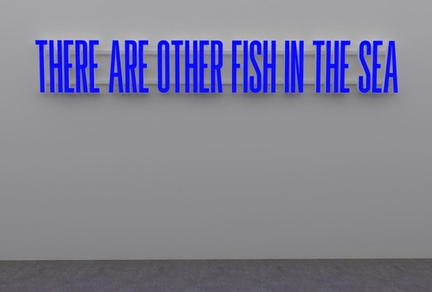 Superflex: There Are Other Fish In The Sea - fish-sea