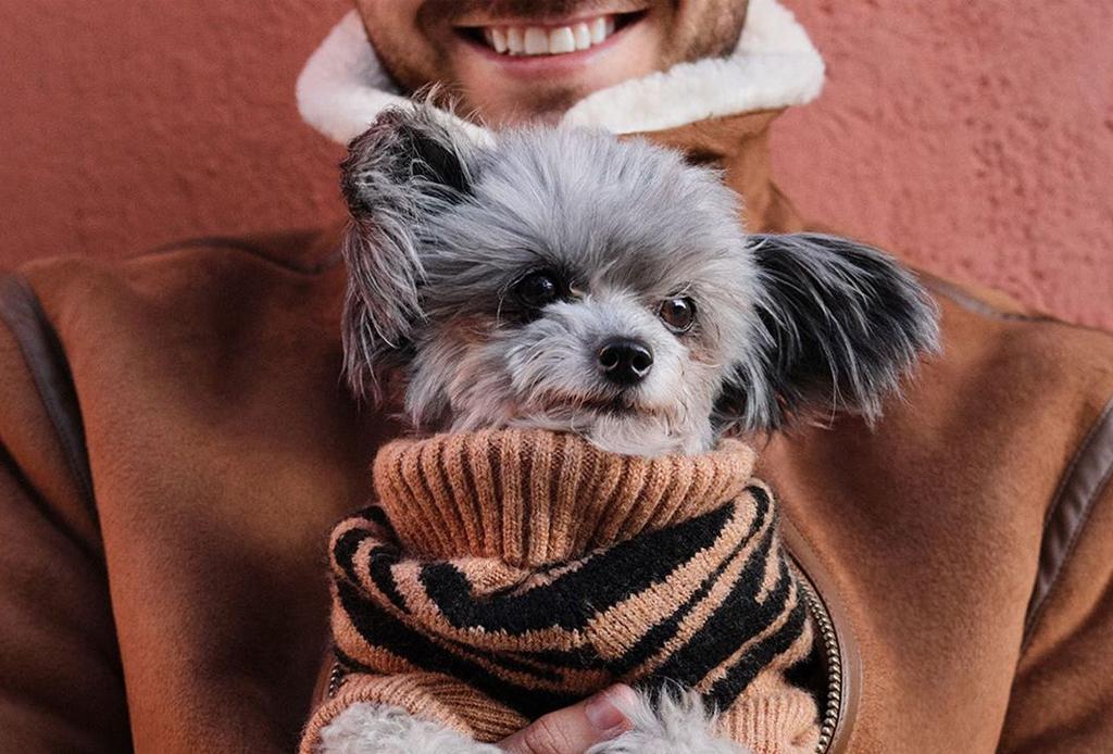 ¿Ropa para combinar con tus perritos?