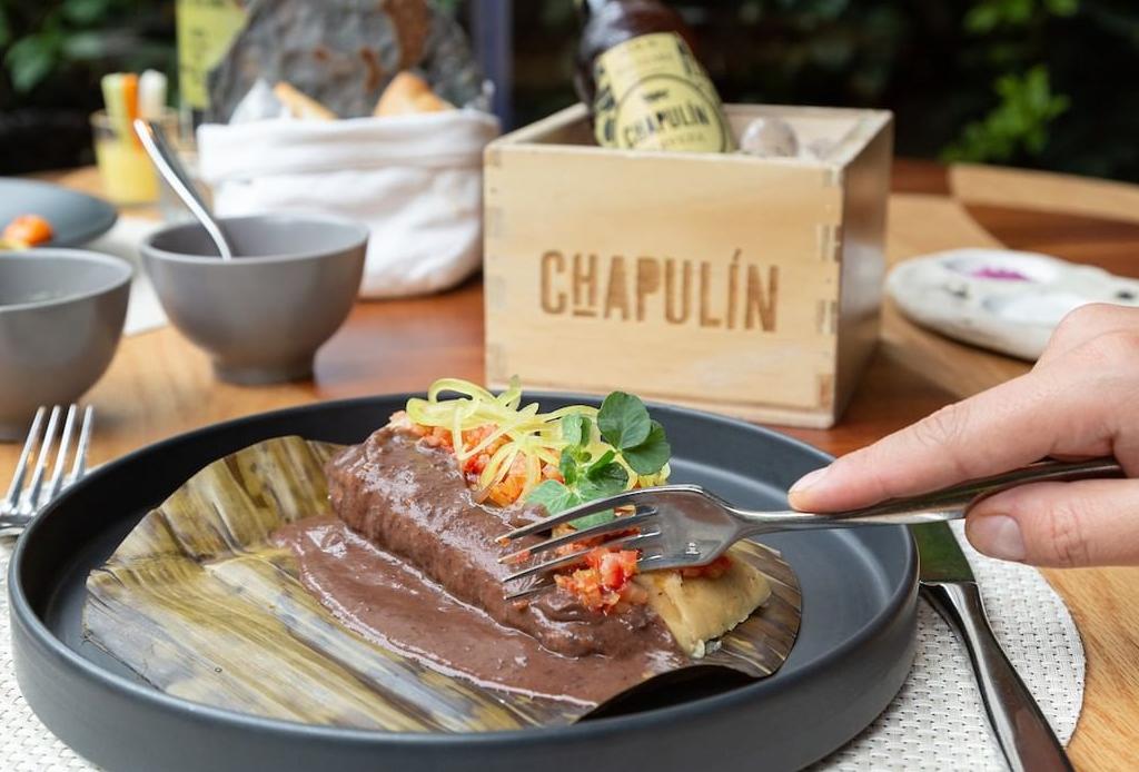 ¿Ya conoces Chapulín? Aquí nuestras razones para hacerlo YA