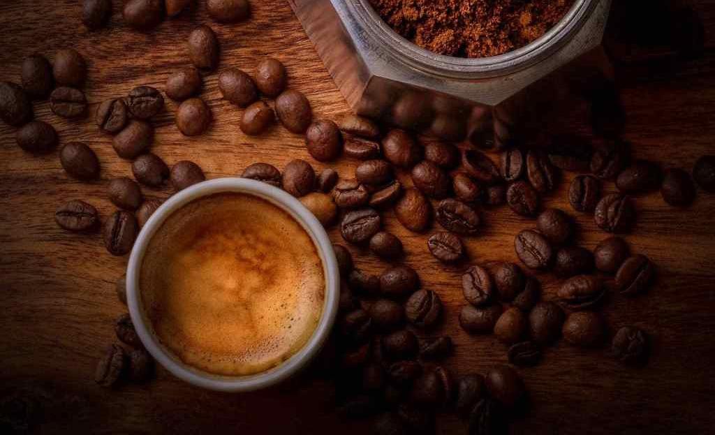 Marcas de café mexicano con prácticas sustentables