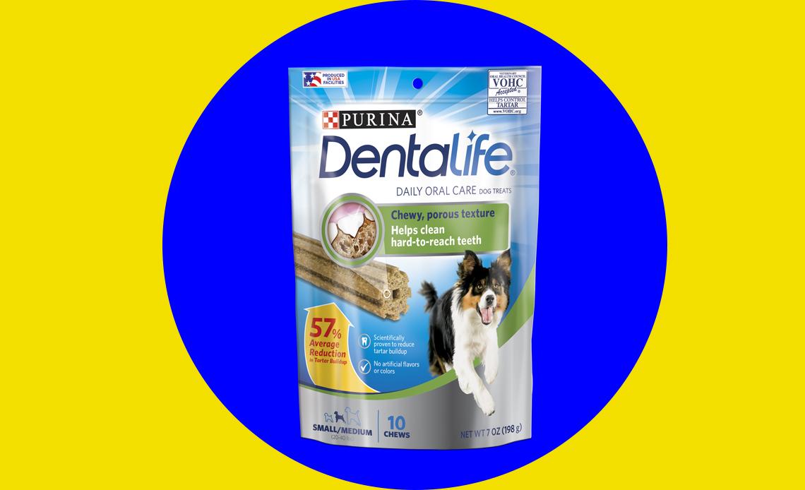 5 productos para cuidar la salud bucal de tu perro - cepillo-perro-2