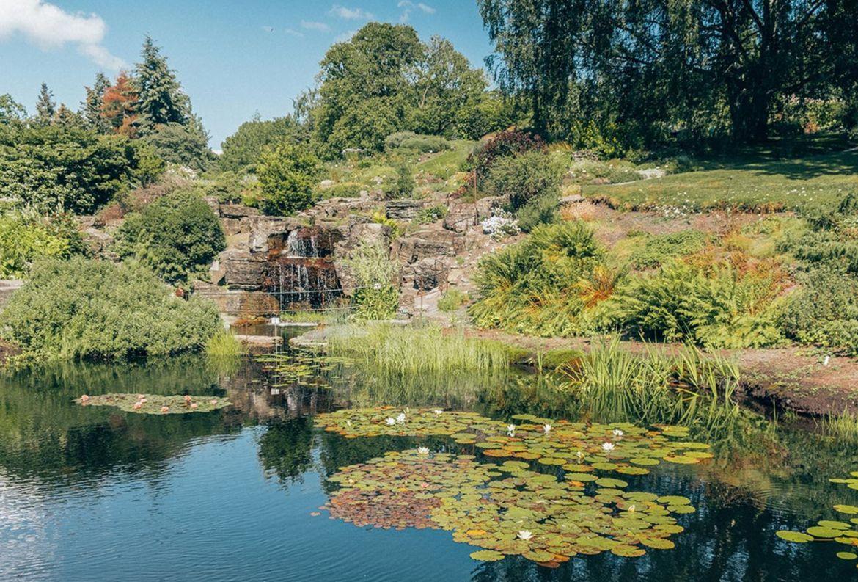 Los jardines botánicos más bonitos del mundo ¡tienes que visitarlos! - jardin-botanico-de-toyen-olso-noruega