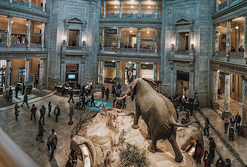 Haz estos 15 recorridos virtuales en museos y galerías de arte del mundo - museos-virtuales-8