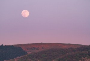 La luna llena más grande y brillante de 2020 es la super luna rosa la próxima semana