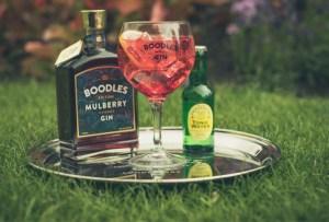 Si amas el gin, te encantará esta receta para un delicioso Mulberry Fizz