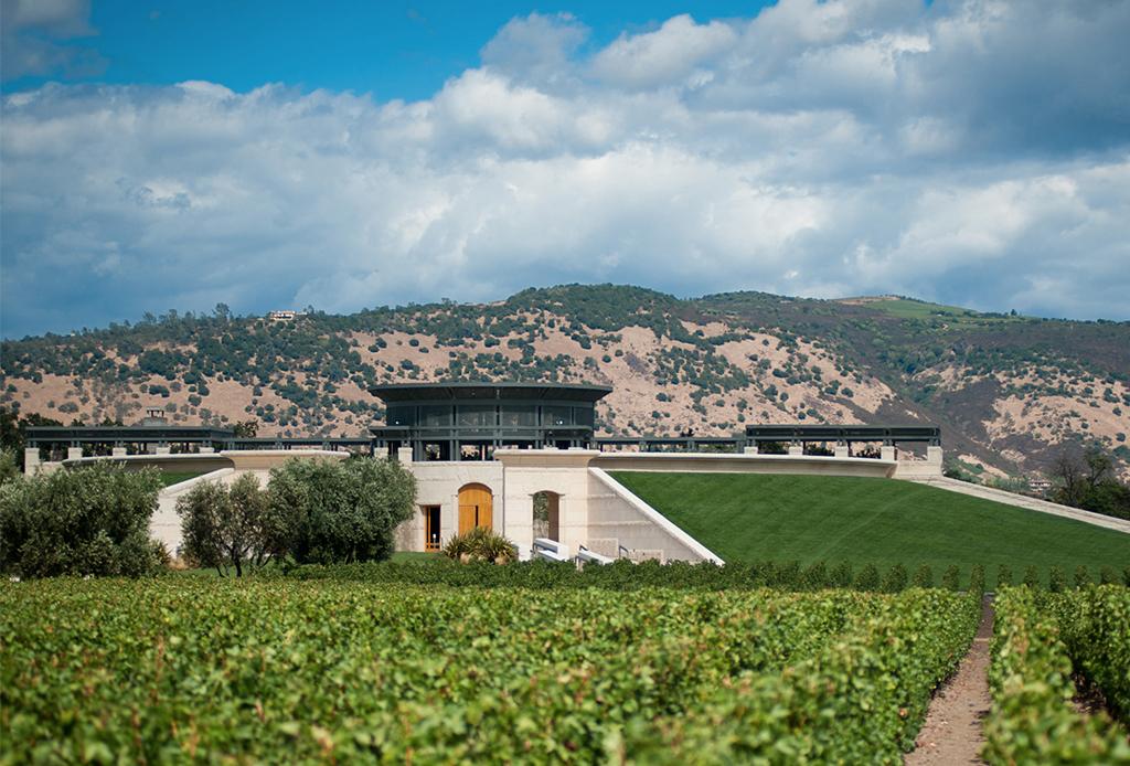 Estos son los viñedos más impresionantes del mundo - vincc83edos-9