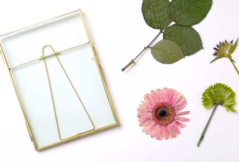 Cómo hacer un hermoso cuadro con flores secas - flores-secas-cuadro-1
