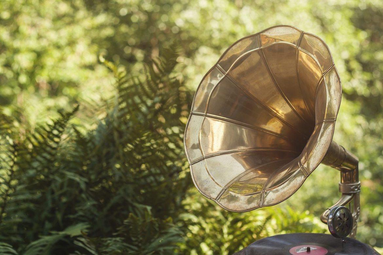 La música puede ayudar a tus plantas... Descubre cómo - plantas