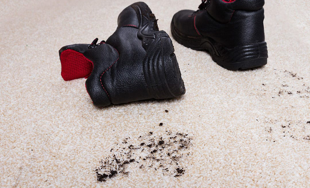 Así es como puedes quitar cualquier mancha de una alfombra - tierra