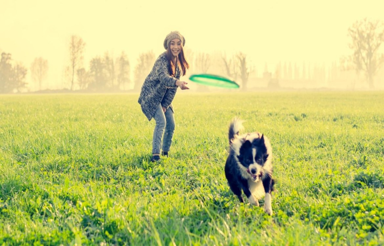 Conoce los increíbles beneficios de pasear a tu perro - felicidad