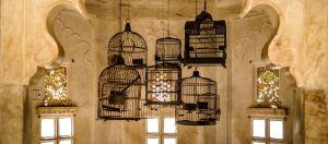 Dale un toque shabby chic a la decoración de tu casa con jaulas