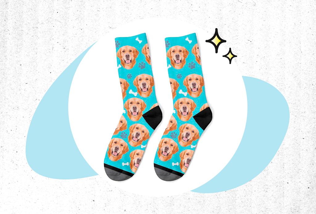 Guía de Regalos: ideas perfectas para un pet lover - regalos-mascotas-1