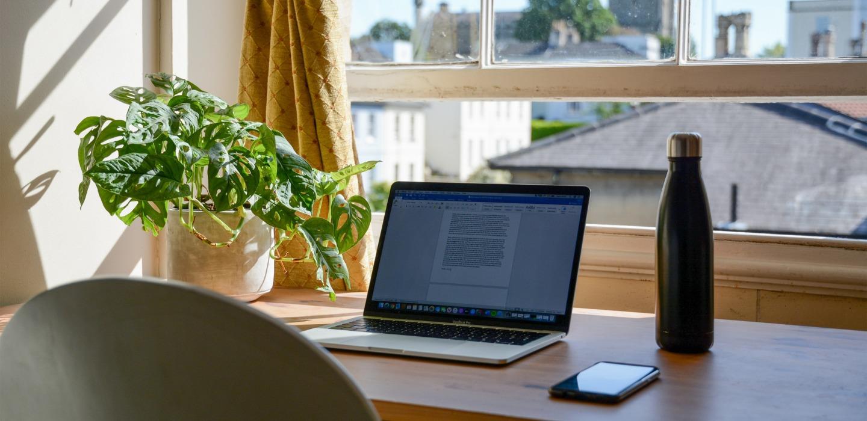 Beneficios de tener plantas cerca en tu área de home office