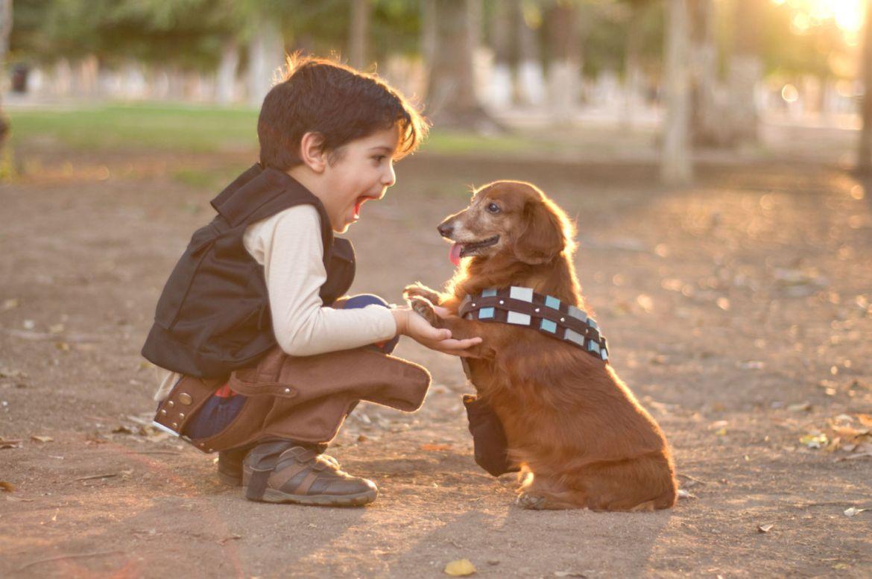 5 Razones por las que deberías adoptar una mascota con tus hijos - nino-con-perro