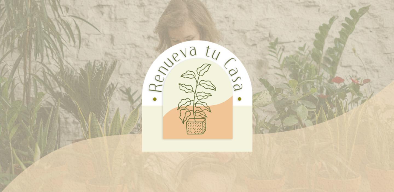 Plantas que te quitan el calor y necesitas tener en casa ahora