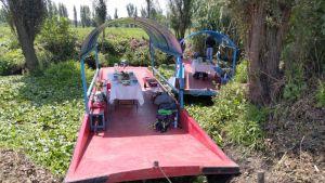 Robotanica: una nueva forma de conocer Xochimilco