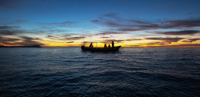 """Cerveza Pacífico presenta """"Un viaje al Pacífico: al encuentro de las ballenas"""""""