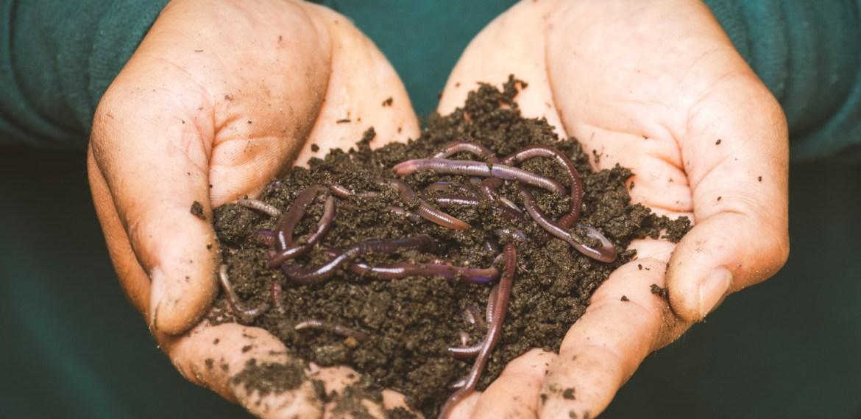 Beneficios de compostar  ¡A marcar la diferencia! - sabrina-76-1