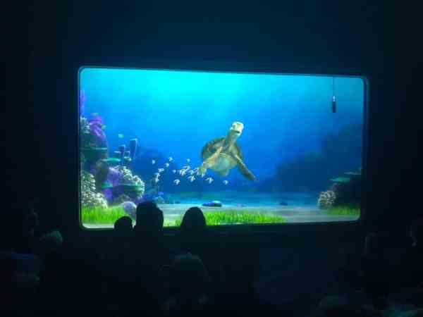 Turtle Talk toddlers Disney