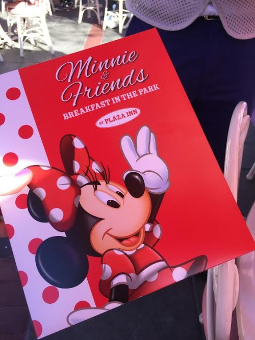 Minnie & Friends character dining photo book