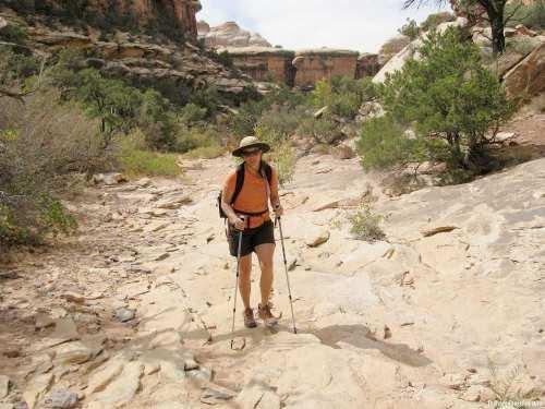 druid-arch-trail