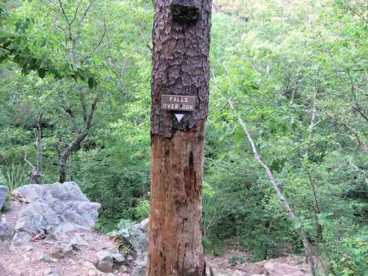 peavine-falls-trail