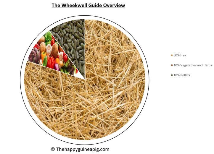 Wheekwell guide