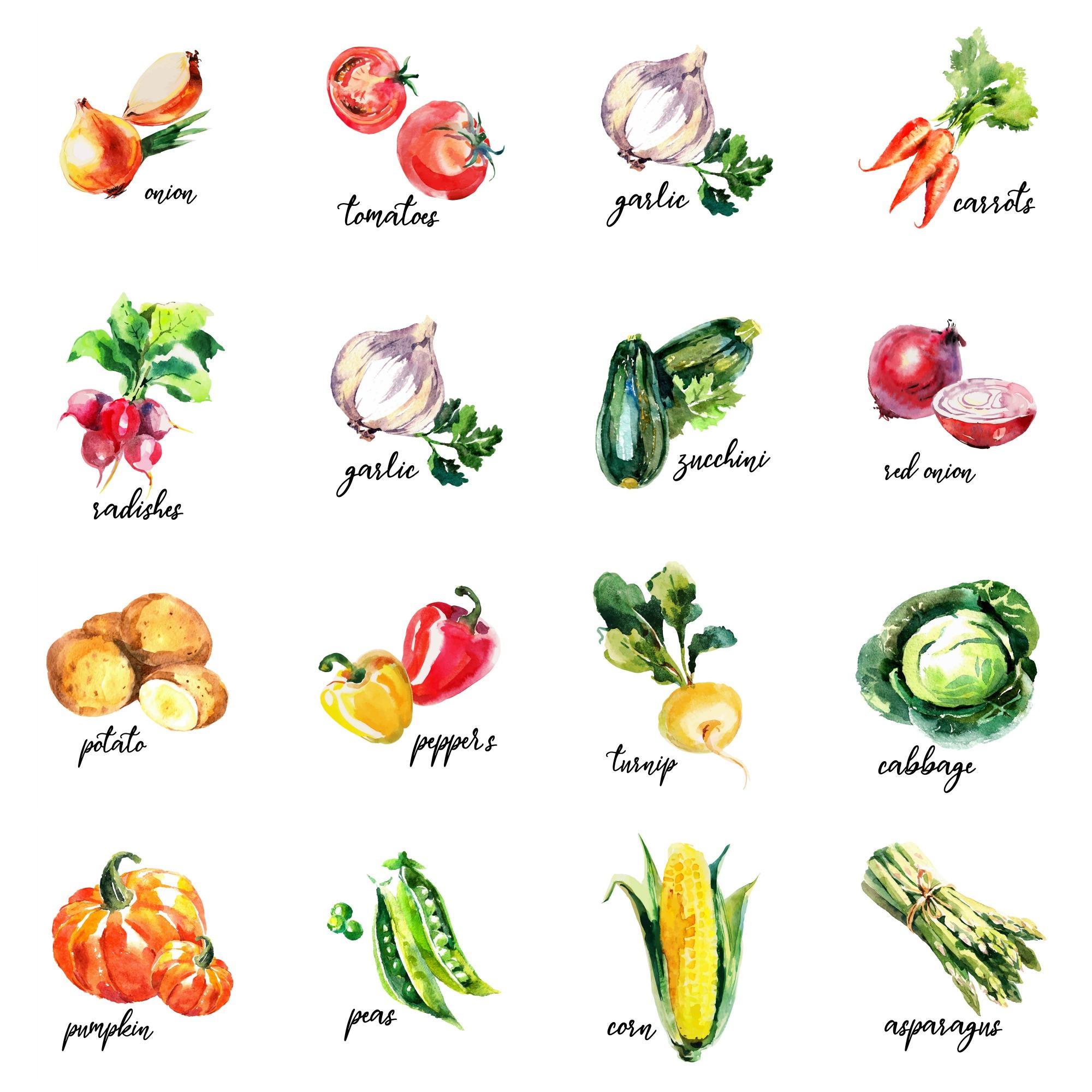 Top Vegetable Printable