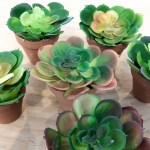 Diy Clay Pot Succulent Wreath Tutorial The Happy Housie
