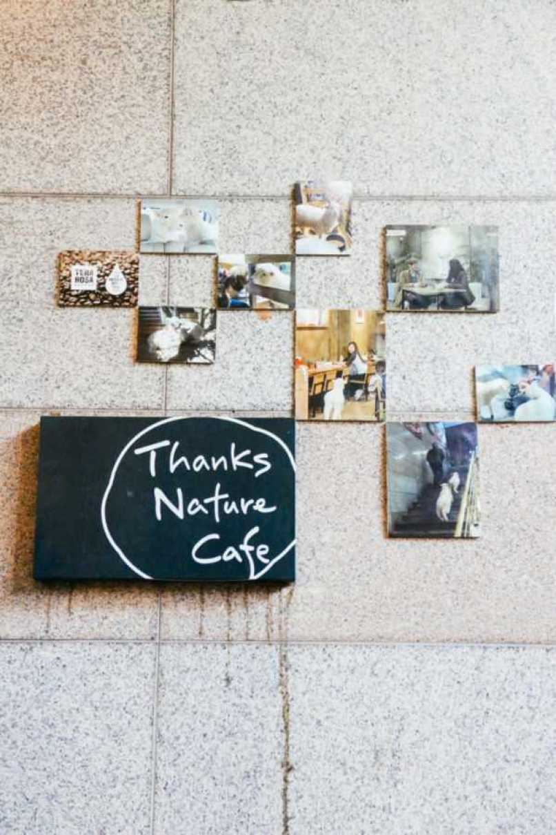 Thanks Nature Café, Seoul, Korea