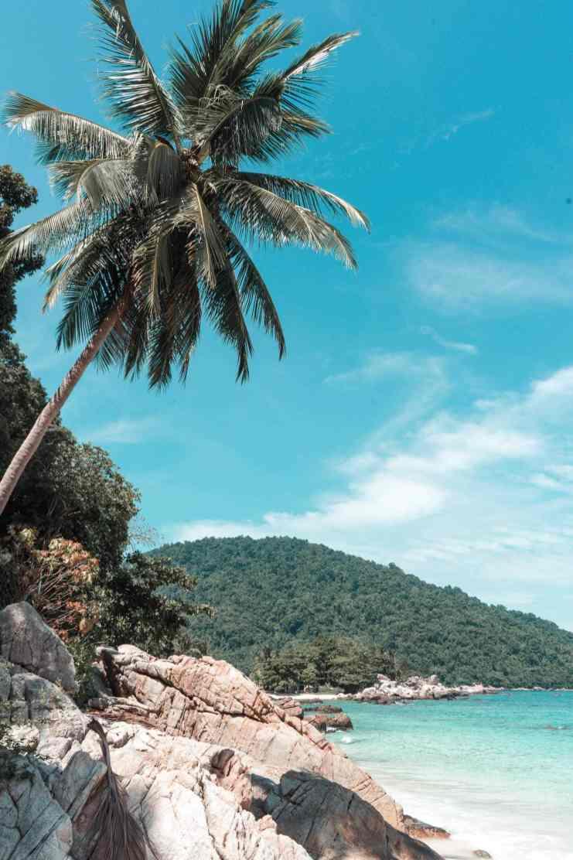 Perhentian Islands Pulau Perhentian Besar Malaysia Strand Palmen