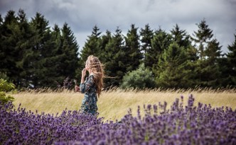 The Happy Kamper - Cotswold Lavender fields - Kammi