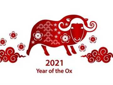 chinese new year 2021 wallpapers