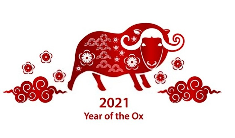 OX Year 2021 Images and Wallpapers | Year of Cow 2021