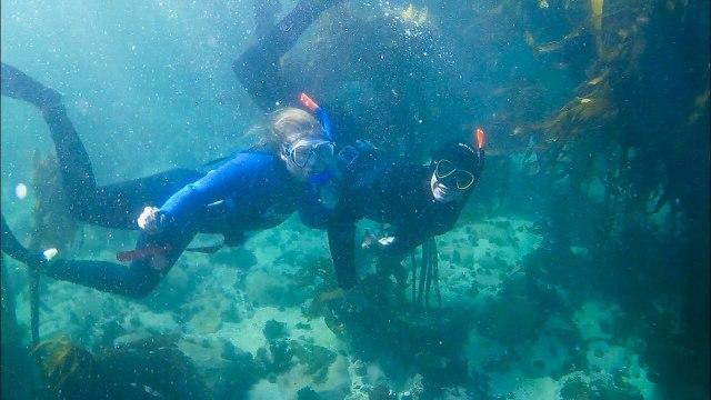 Castle Rock freediving site in Cape Town
