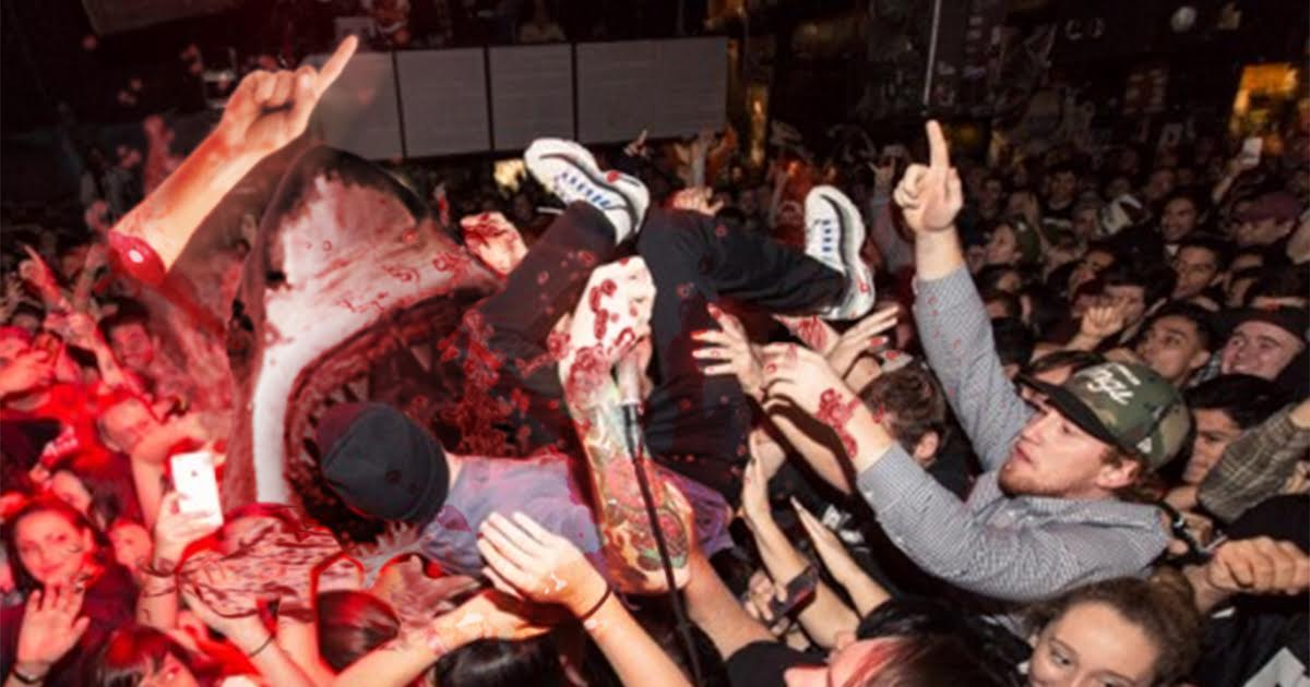 Crowd Surfer Attacked By Crowd Shark