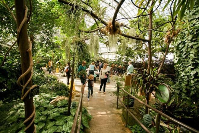 inside-garfield-park-conservatory--chicago-events-feburary-2019-thehauteseeker