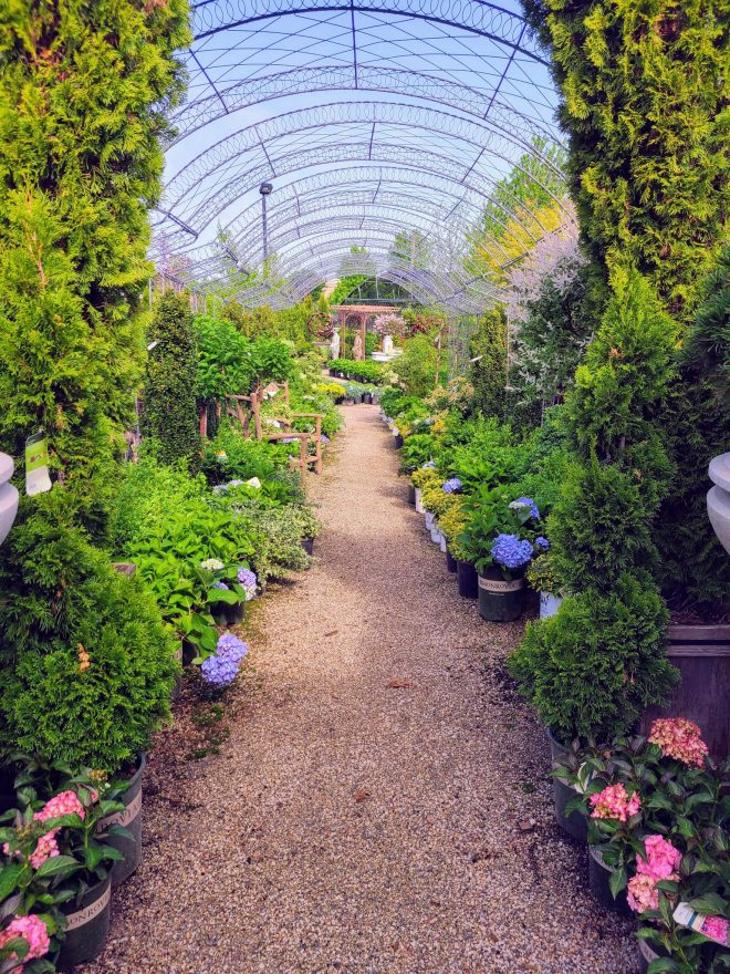 Plant Nursery Chicago Spring Things to Do The Haute Seeker
