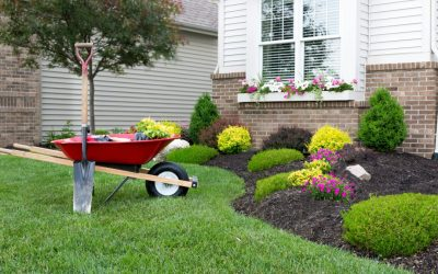 DIY Landscaping Projects to Increase Your Home's Value