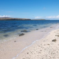 Skye's 'coral beach'
