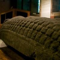The Govan Stones
