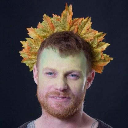 Autumn colours maple leaf crown