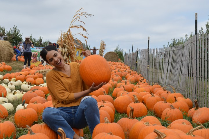 Fall is Here! The Ultimate Fall Bucket List Challenge