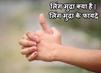 लिंग मुद्रा क्या है | लिंग मुद्रा के फायदे | How To Use Ling Mudra In Hindi