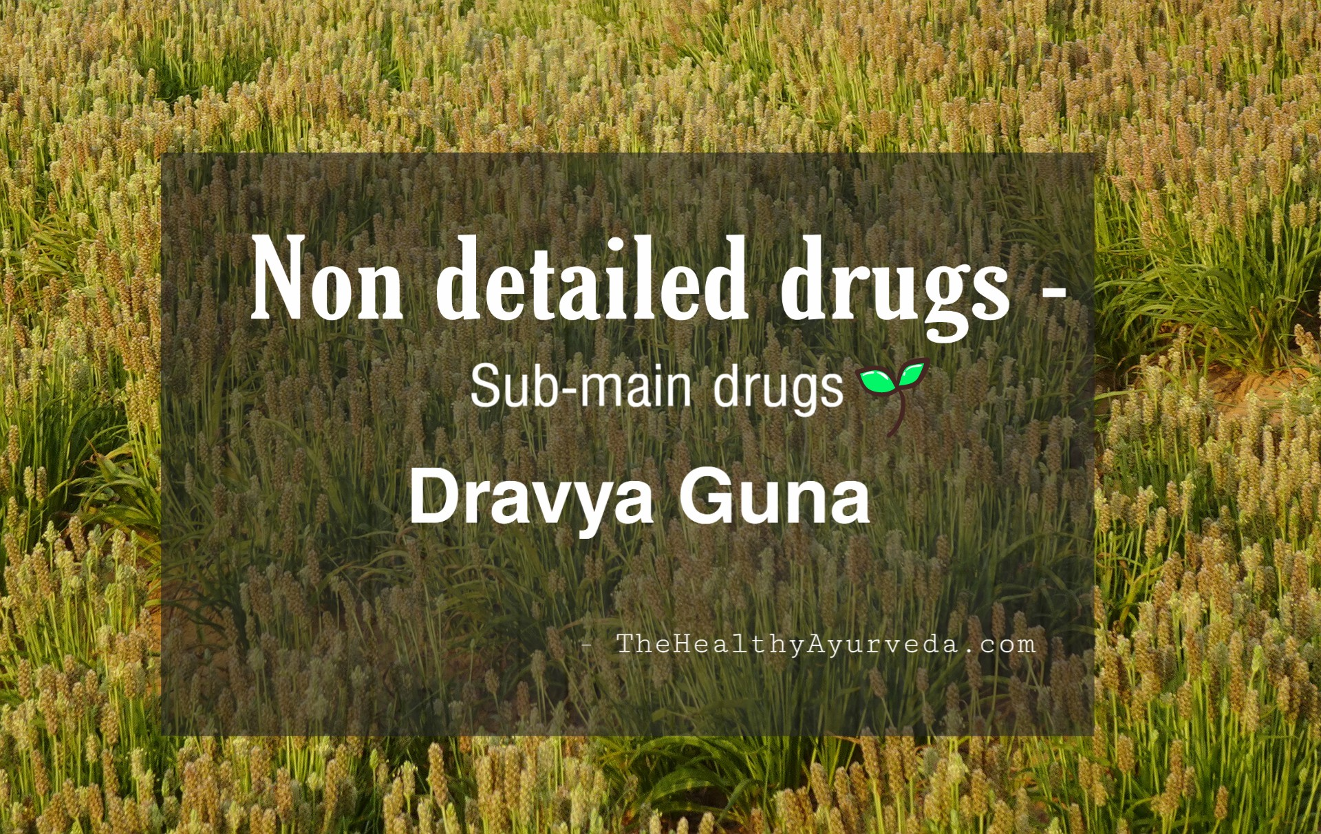 Non detailed drugs -Sub main drugs – dravya guna vigyāna