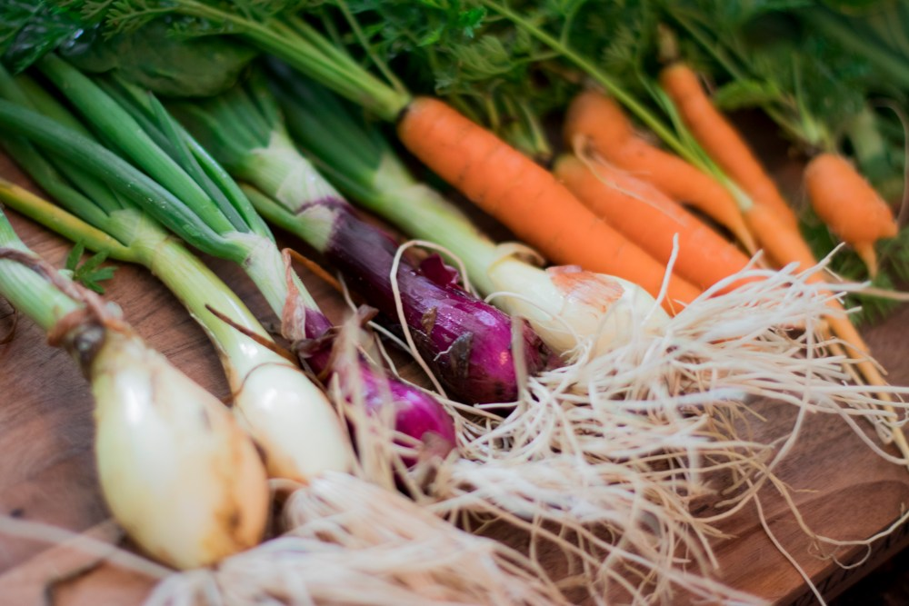 farmersmarket_11