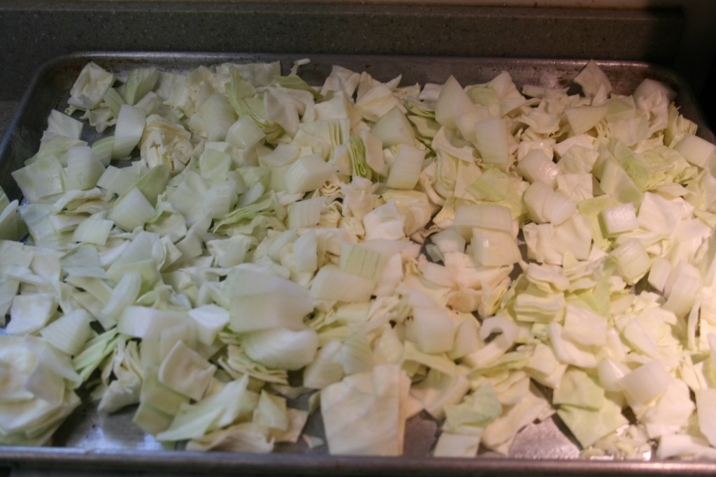Uncooked cabbage and onions