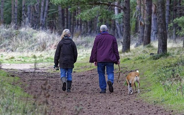 5 Reasons Why Walking is Good for Your Health
