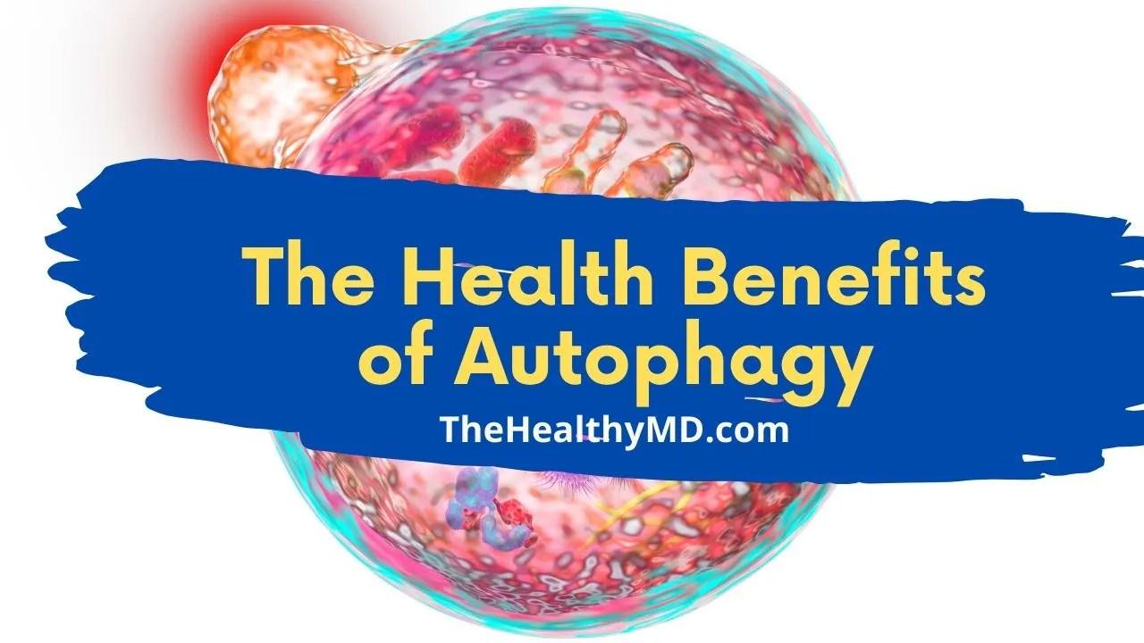 The 9 Top Health Benefits of Autophagy