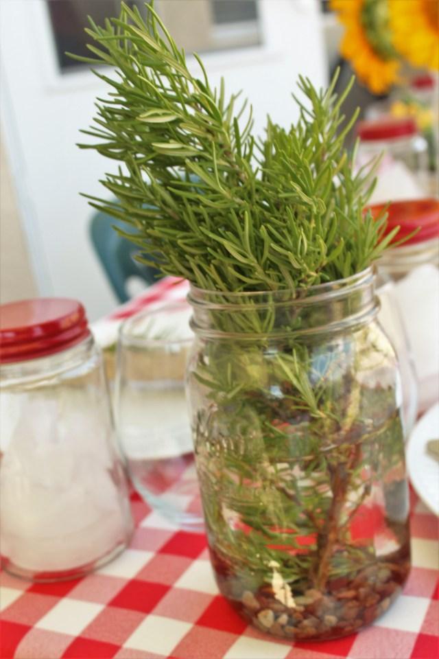Vase of Rosemary